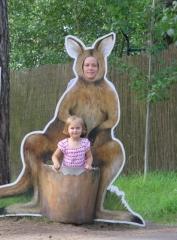 kangurus