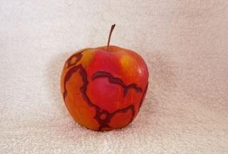 apple_271