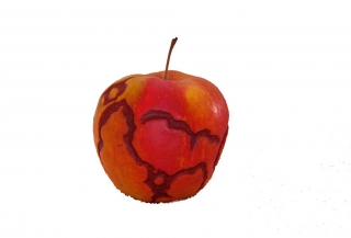 apple_2_271